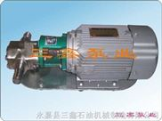 三相不锈钢WCB齿轮油泵