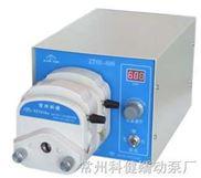 精密蠕动泵ZT60-600(二通道)