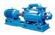2SK型雙級水環式真空泵