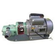 WCB系列微型输油泵,手提油泵