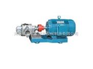 不锈钢转子泵/电动润滑油泵