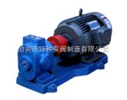 高压齿轮泵/25x4-w21螺杆泵
