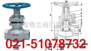 丝口柱塞阀-电动#&法兰&%承插焊-上海