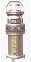 立式單級管道化工潛水泵