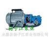 油泵:WCB手提式不锈钢齿轮油泵
