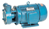 1W2.4-12旋涡泵
