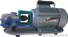 WCBWCB手提式不锈钢齿轮油泵