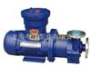 50CQ-50不锈钢磁力泵,50CQ-32磁力泵价格,65CQ-25磁力驱动泵